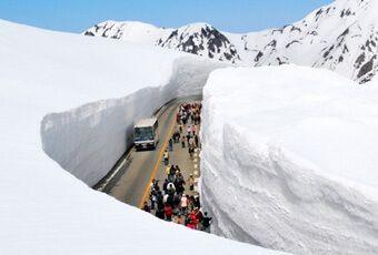 黑部立山(立山黑部)雪壁