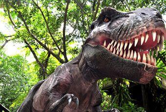琉球亞熱帶恐龍森林公園