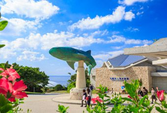 沖繩美ら海水族館