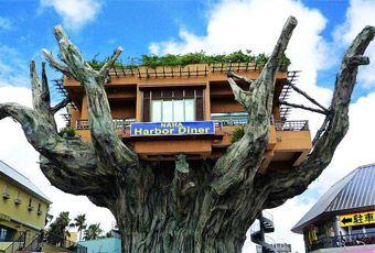 沖繩樹包厝