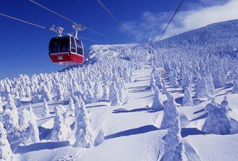 日本東北藏王樹冰