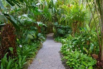 吉隆坡香料水果園