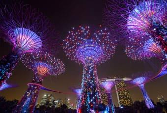 新加坡濱海灣南花園