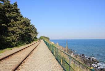 韓國首爾海邊鐵軌腳踏車