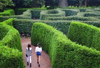 濟州島迷宮樂園