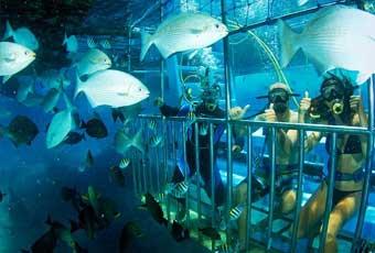 巴里島金銀島+海底監獄一日遊
