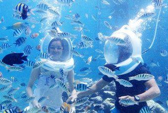 峇里島海底漫步