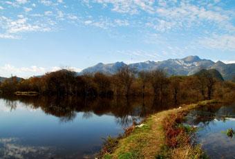 湖北神農架風景區