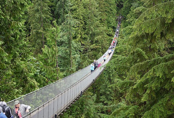 加拿大卡皮蘭諾吊橋公園