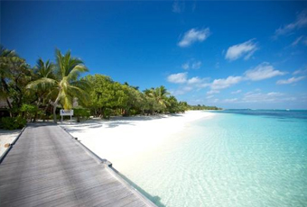 馬爾地夫狄娃島Diva Maldives