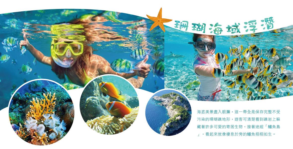 珊瑚海域浮潛