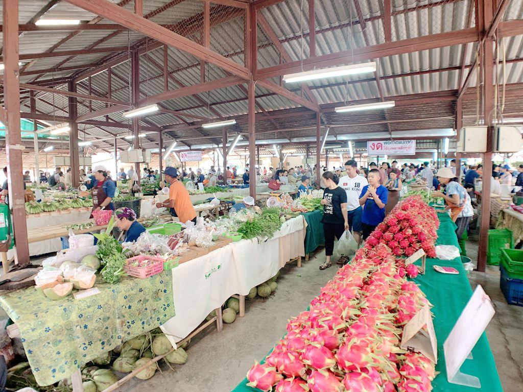泰國清邁jingjaimarket農夫市集-有機水果