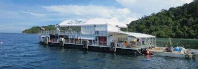 沙巴婆羅洲大堡礁世界Borneo Reef World