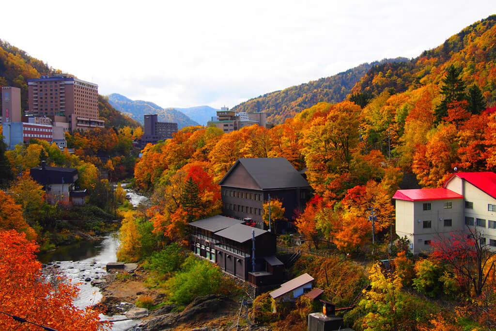 北海道旅遊:楓葉