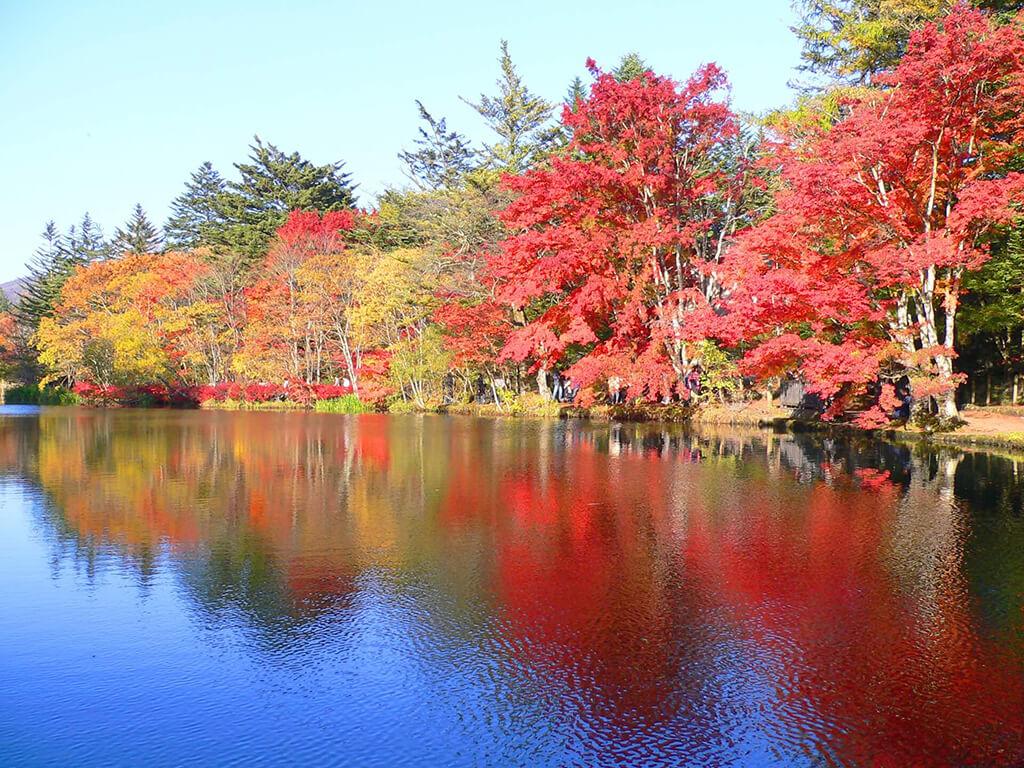 輕井澤的美絕對值得花時間一一品味,到日本賞楓千萬別錯過了
