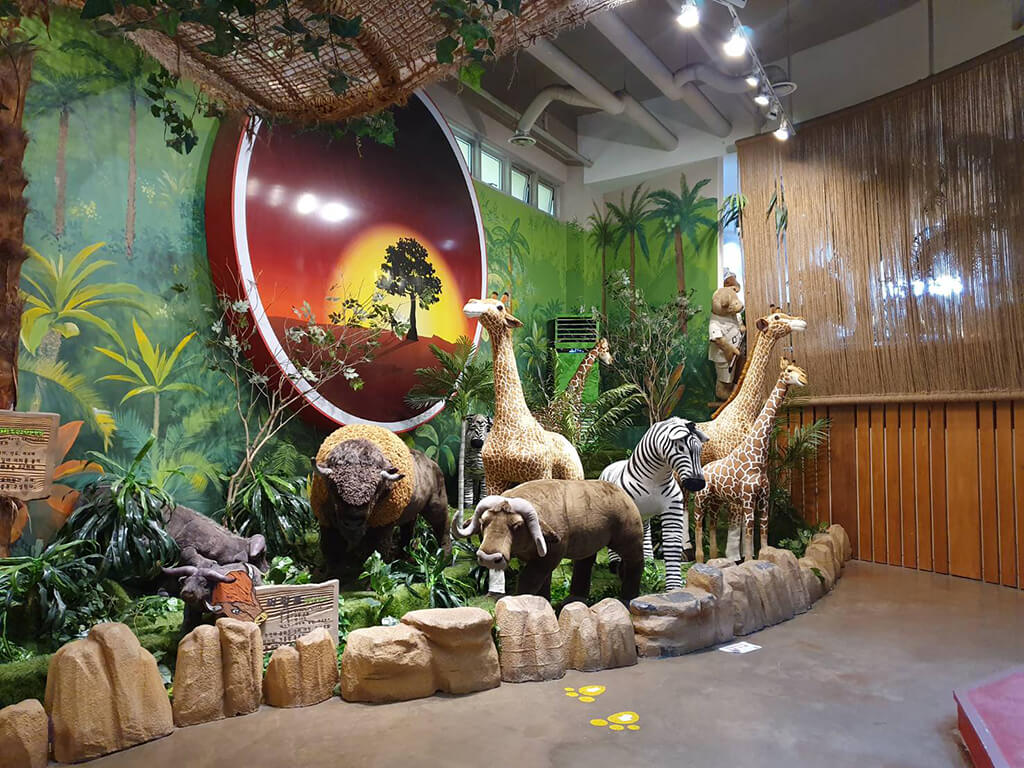 濟州島泰迪熊博物館介紹