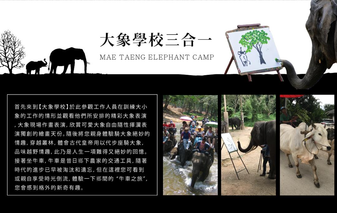 MAE TAENG ELEPHANT CAMP大象學校三合一