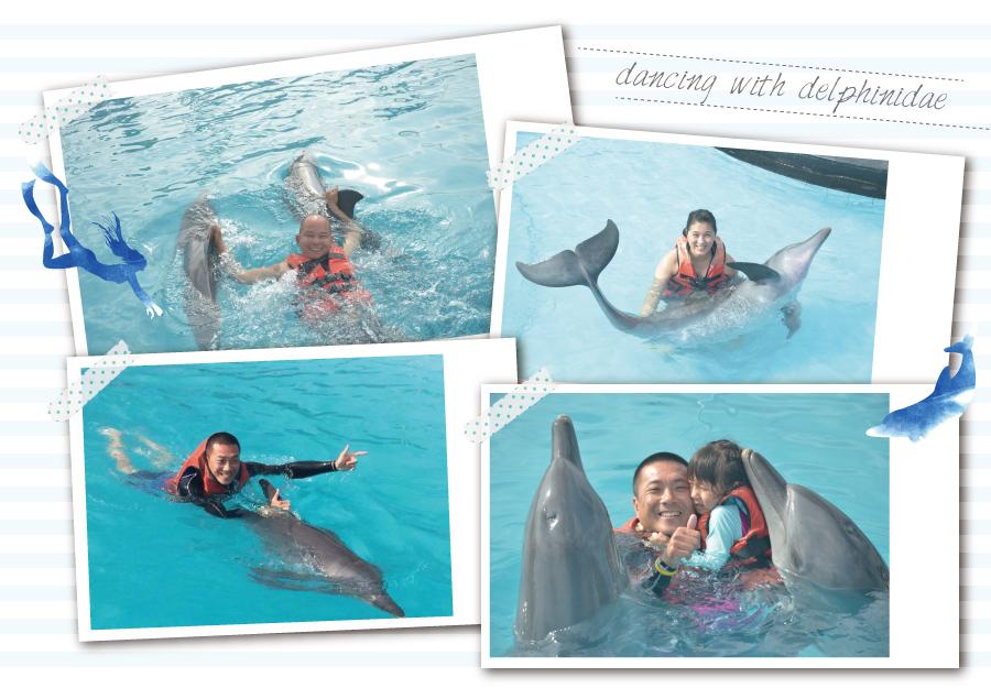 海豚共遊照片