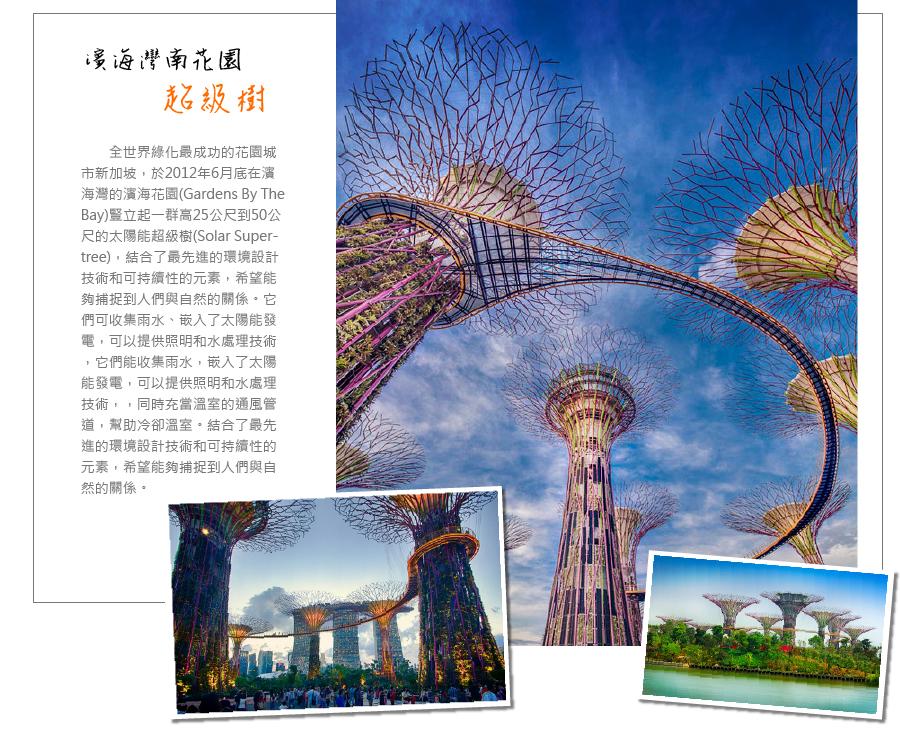 斌海灣南花園超級樹